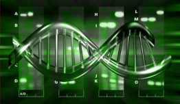 bacterii-4 GMO